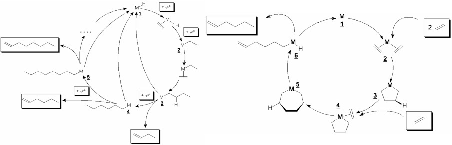 mechanism of olefin metathesis reaction